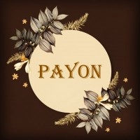 Wholesale payon barrette