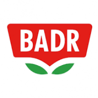 Wholesale BADR