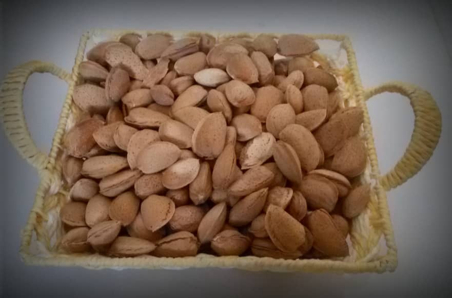 products  Zagros Almond