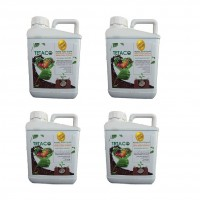 Wholesale buying Humic Acid Fertilizer Tetaku HUMORE Model 5 liters pack 4 pcs Supplier:                                                                                                            Tetaco
