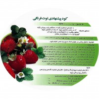Wholesale buying AYSA strawberry fertilizer weighs 1 kg Supplier:                                                                                                            Tetaco