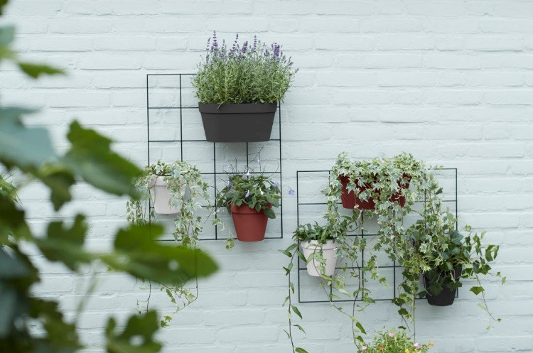 image number  3 products  Small wall green pot