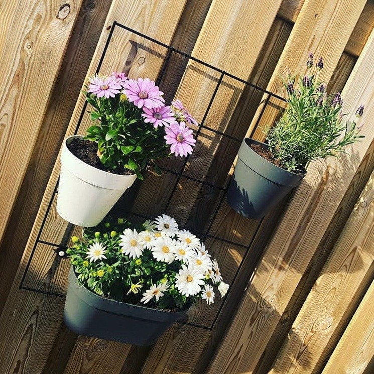 image number  1 products  Small wall green pot
