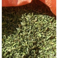 Wholesale buying dried mint Supplier:                                                                                                            14