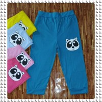 Wholesale buying Bermuda Panda shorts Supplier:                                                                                                            StarWear